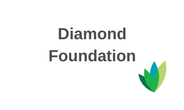 Diamond Foundation